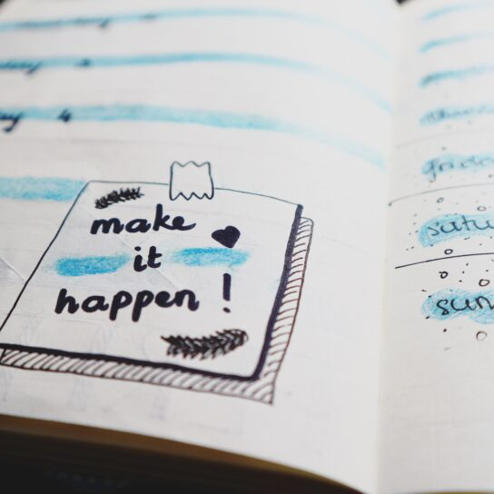 Diary for edtech business success